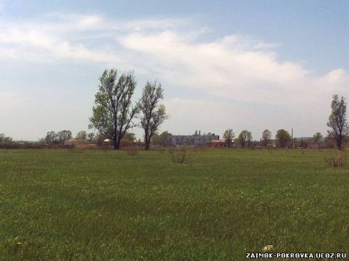http://zaimok-pokrovka.ucoz.ru/_ph/23/2/217428622.jpg
