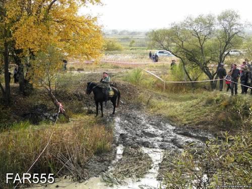 http://zaimok-pokrovka.ucoz.ru/_ph/47/2/218048926.jpg?1477142330